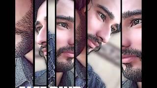 Haal E Dil male version sanam teri kasam full video