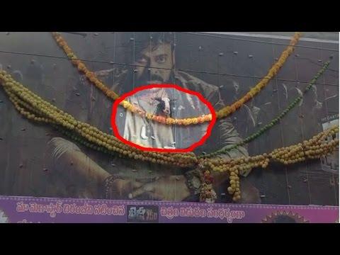 watch Chiranjeevi Fans Hangs Goat On Khaidi No 150 Movie Poster | Kurnool Dist | HMTV