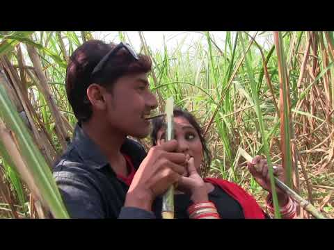 Xxx Mp4 गन्ना के खेत मे Ganna Ke Khet Me Sexy Shooting Prince Saini Rupa ADITYA DREAM MUSIC 3gp Sex