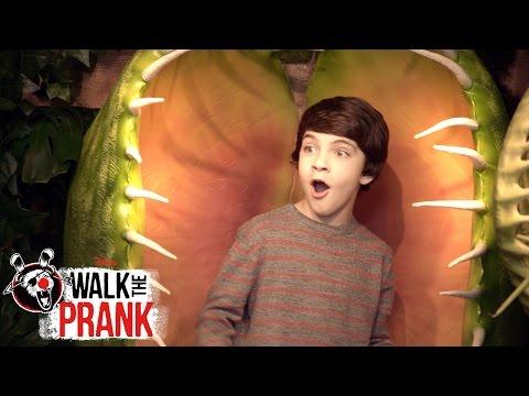 Plant Attack Walk the Prank Disney XD