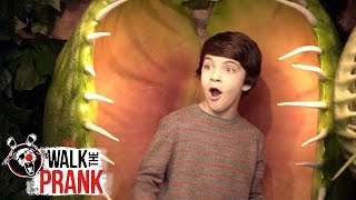 Plant | Walk the Prank | Disney XD