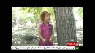 Iran Choghar Chuiyeh village, Valnut harvest برداشت گردو روستاي چغارچوييه ايران