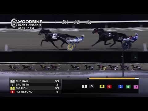 Woodbine, Mohawk Park, February 18, 2019 Race 7