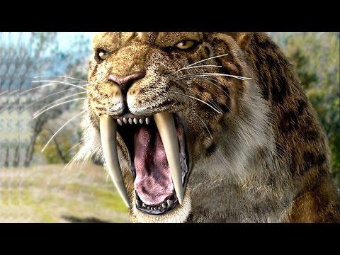 Prehistoric predators sabertooth