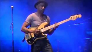 Panther Marcus Miller 2016