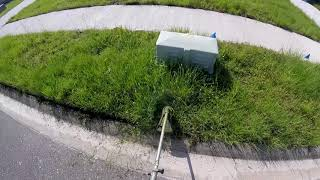 POV Lawn Care Service On Overgrown Yard | Real Time, Raw Audio, Tall Grass, Pure Satisfaction