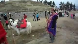 Fagu Landscape Video Sunil Verma.