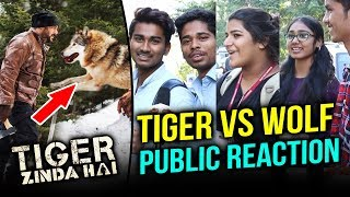 Salman Khan FIGHTS With Deadly WOLF In Tiger Zinda Hai | PUBLIC Goes Crazy