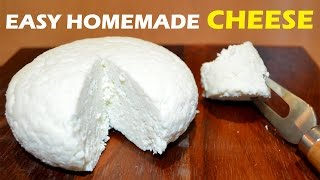 How to Make Cheese at Home - 2 ingredient Easy Cheese Recipe