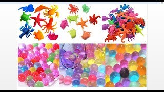 Magic Surprise Eggs Growing Pet Expandable in Water Crocodile, Lizard Monkey,Frog, Snake and More