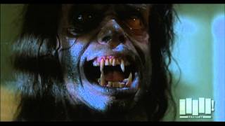 Werewolf transformation - The Howling (1981)