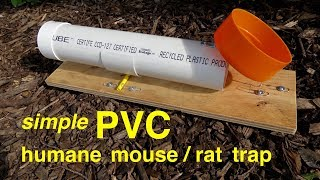 How to make  ● a simple PVC HUMANE RAT/MOUSE TRAP