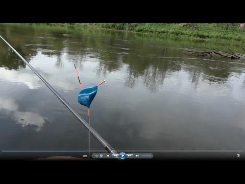 рыбалка клязьма не клюет