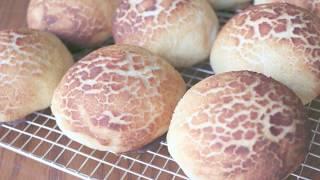 Sourdough Tiger Bread Rolls AKA Dutch Crunch Buns
