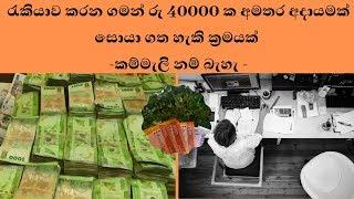 රැකියාව කරන ගමන් රු 50000 ක අමතර අදායමක් සොයා ගත හැකි ක්රමයක් -  extra income srilanka
