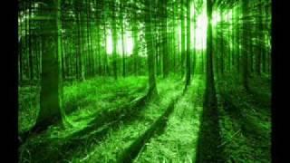 PichuTan [ Followed by ochena srabone] by SHAON.wmv
