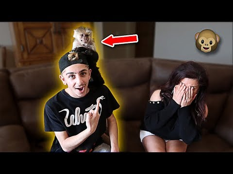 Xxx Mp4 BUYING MY MOM A PET MONKEY FOR HER BIRTHDAY EMOTIONAL FaZe Rug 3gp Sex