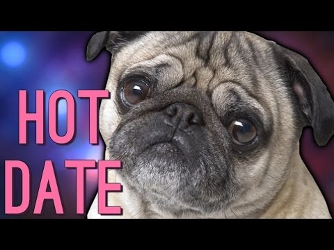 Xxx Mp4 DATE WITH A DOG Hot Date 3gp Sex