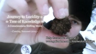 (Funding Support Trailer) Journey to Lucidity 2: Tree of Knowledge. A Consciousness Shifting Movie.