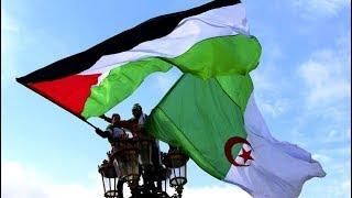 La joie des Palestiniens de Gaza après la victoire de l