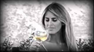 Silvina Luna del viñedo a la publicidad de vinos