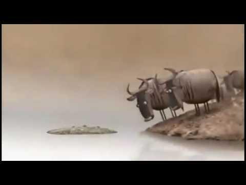 Bhojpuri Best Funny Videos.    का हरे ...क�छ लउकता...मगर हरे...नारे लकरी न� हरे...  Whatsapp Video..