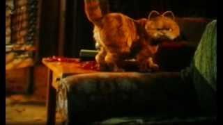 Garfield cd1