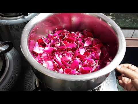 घर पर गुलाब जल बनाने का सबसे आसान तरीका D I Y rose water how to make rose water at home simply