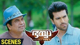 Bhaiyya My Brother Malayalam Movie Scenes | Brahmanandam to Direct Amy Jackson | Ram Charan | DSP