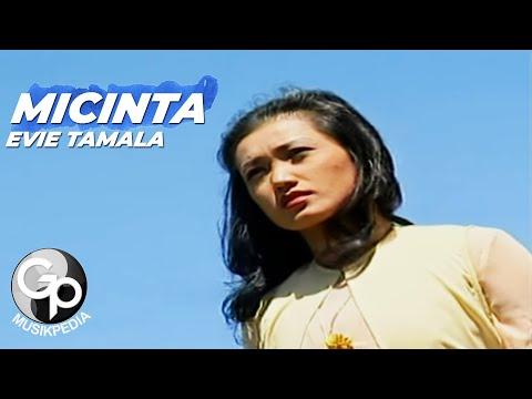 MICINTA - Evie Tamala