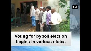 Voting for bypoll election begins in various states - ANI News
