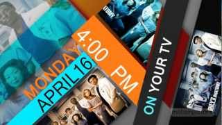 FREE [After effects Template ]_TV program