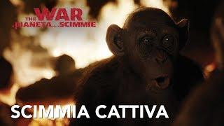 The War - Il Pianeta Delle Scimmie | ClipBad ApeHD | 20th Century Fox 2017