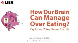 How Our Brain Can Control Overeating and Obesity: Exploring 7 Key Neural Circuits