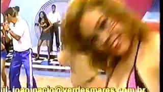 As sensuais Tigresas de biquini -  tigresas&beldades