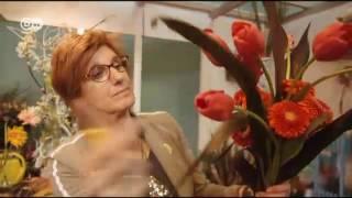حديقة كويكنهوف بهولندا ـ سبعة ملايين زهرة ومليون زائر | يوروماكس