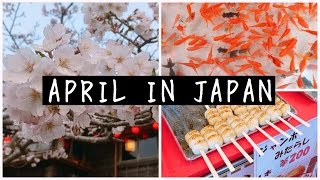 My Life in Japan | April Extras 🌸
