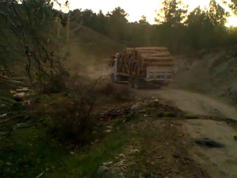 tomruk kamyonları
