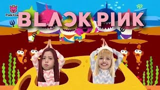 BLACKPINK on 'BABY SHARK DANCE'