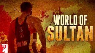 World of Sultan   Salman Khan   Anushka Sharma