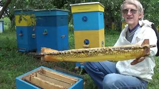 Effective Ukrainian Beehive. Why? How? Where? In Kiev, Ukraine (in ENGLISH)