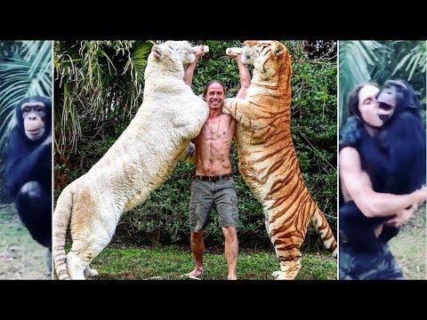 REAL TARZAN RAISED WITH TIGERS KODY ANTLE