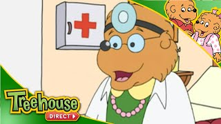 The Berenstain Bears | Getting Sick
