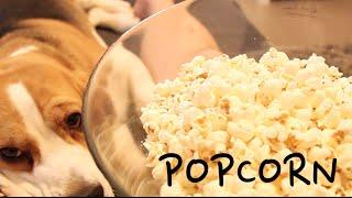 Popcorn - Amir and Merav's wedding video clip