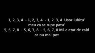 Delia-1234 (unde dragoste nu e ) versuri/lyrics