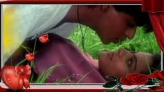 Teri Chahat Main Dil Yeh Deewana Hua_Kumar Sanu &  Sadhna Sargam