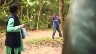 সিকান্দার বক্স- তরে কুইট্টা হালবাম