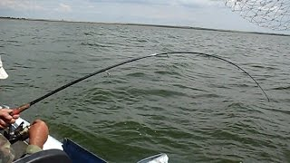 ловля в заливе с берега