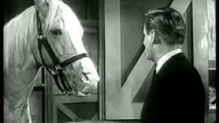 Mr Ed The Talking Horse Public Service Announcement