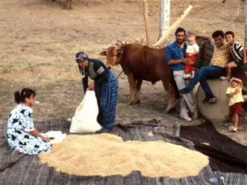 Adana Tufanbeyli Çatalçam Köyü